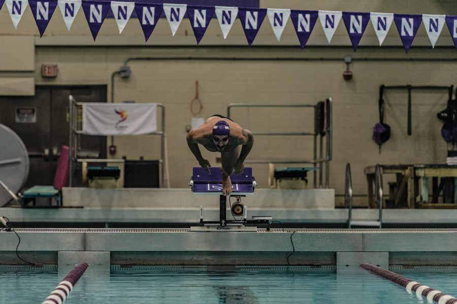 Nick+Petersen+dives+into+the+pool.+The+senior+with+race+in+his+final+home+meet+Friday+against+Iowa.