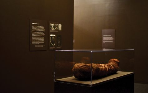 """""""Paint the Eyes Softer"""" features local mummy and student research"""