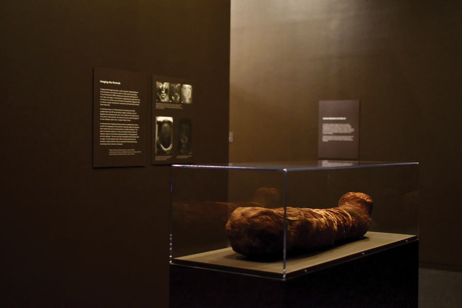 The mummy of a young girl on display. The mummy is usually housed in the Styberg Library.