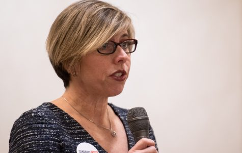 Democratic candidates for 17th District state rep. talk backgrounds, experiences at forum