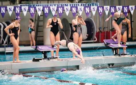 A Northwestern swimmer enters the pool. The Wildcats will look to surprise some people at the upcoming Big Ten Championships.