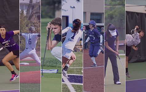 Spring Sports Overview