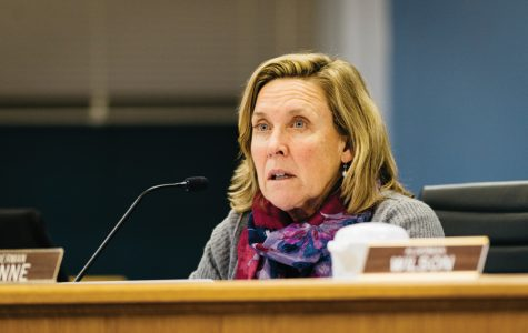 Ald. Melissa Wynne (3rd) speaks at a council meeting. Wynne voted to deny the lease agreement with Evanston Lakehouse and Gardens.