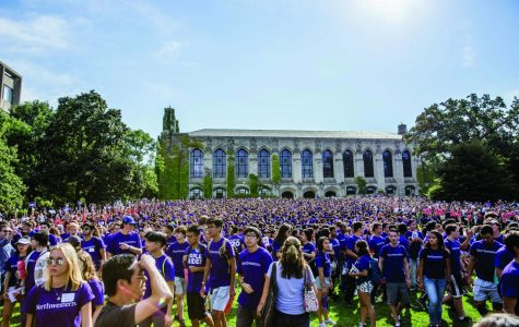 Go Cats! Show your purple pride with these traditions