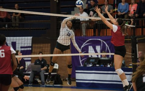 Volleyball: Cats fall to Minnesota