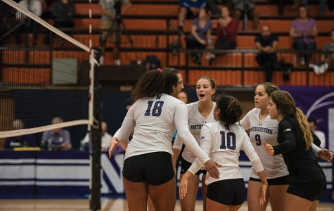 Volleyball: Cats return home, face off against Michigan State, Michigan