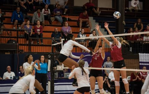 Volleyball: Northwestern to play rival Illinois