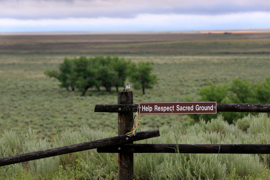 A bird rests on a fence post overlooking the area of where the massacre took place at sunrise at the Sand Creek Massacre National Historic Site on June 29, 2016 near Eads, Colorado. Northwestern commemorated the 154th anniversary of the massacre.
