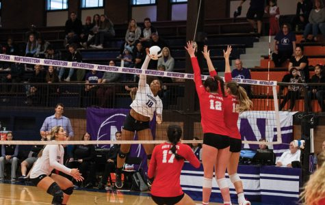 Nia Robinson strikes a volleyball. The sophomore outside hitter led the team in kills.