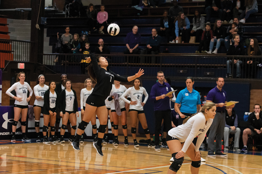Michelle Lee serves the ball. The freshman libero had six digs Saturday.