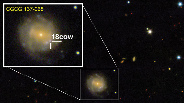 The+anomaly%2C+nicknamed+%E2%80%9CThe+Cow.%E2%80%9D+This+is+the+first+time+the+birth+of+a+black+hole+may+have+been+captured.