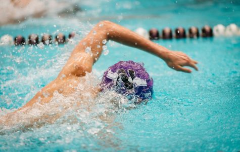 Swimming: Northwestern splits back-to-back with Louisville, Cincinnati