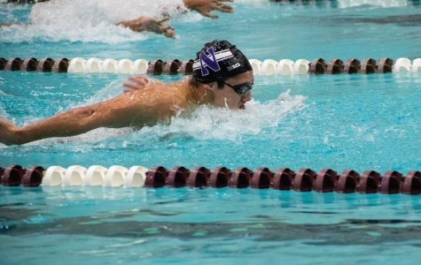 Justin Hanson swims the butterfly. The Wildcats are hoping to improve on last year's ninth-place finish at the Big Ten Championships.