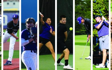 2019 Spring Sports Preview
