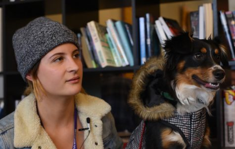 Some students with emotional support animals say they don't feel supported by NU's Residential Services