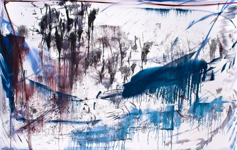 Russian visual artist brings abstract exhibit to Evanston