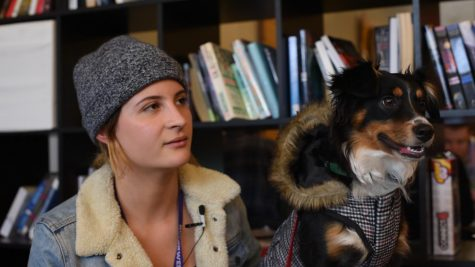 Students with emotional support animals struggle with dorm life