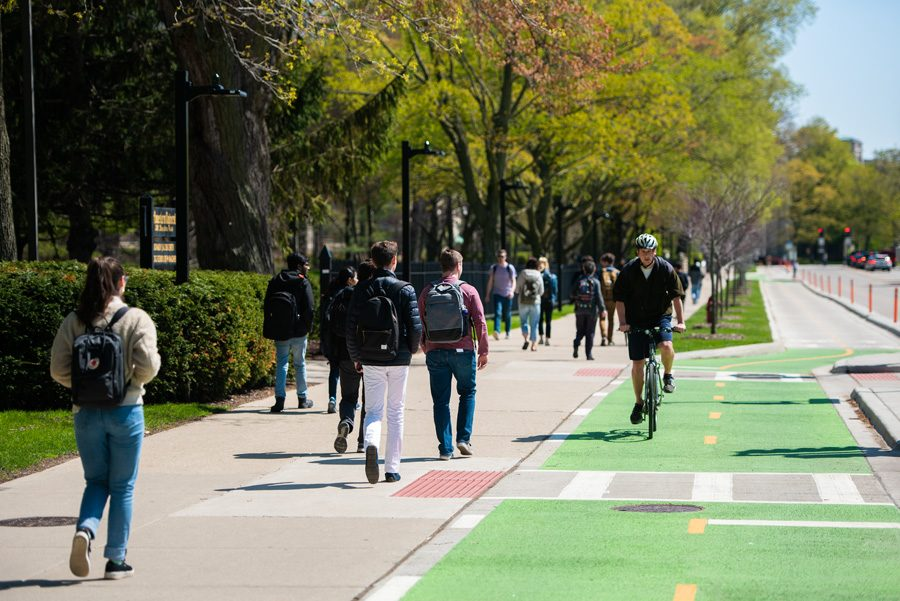 The afternoon commute on Sheridan Road, where many students have encountered swarms of pesky gnats.