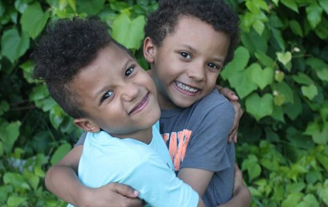 Northwestern, University of Illinois launch database of twins for research