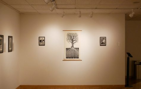 "Gabriella Boros' woodblock printings ""The Old Oak,"" ""Walk,"" and ""Ruach"" (From left to right). Boros explores the entangled connection between plants and humans in the exhibit ""Narrative Botanics"" which is now on view at Dittmar through Oct. 13."