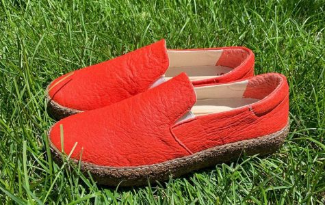 """NU alumnus launches """"first plant-based footwear brand"""" with compostable loafers"""