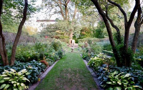Students delighted after stumbling upon secluded Shakespeare Garden