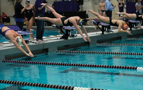 Swimming and Diving: NU ranks 15th in CSCAA TYR Dual Meet Poll