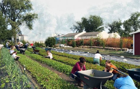 The Talking Farm educates community, provides produce for local businesses
