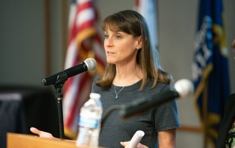 State Sen. Laura Fine (D-Glenview) speaks at Evanston Public Library in April 2019. Fine chief co-sponsored a bill that would cap out-of-pocket insulin costs.