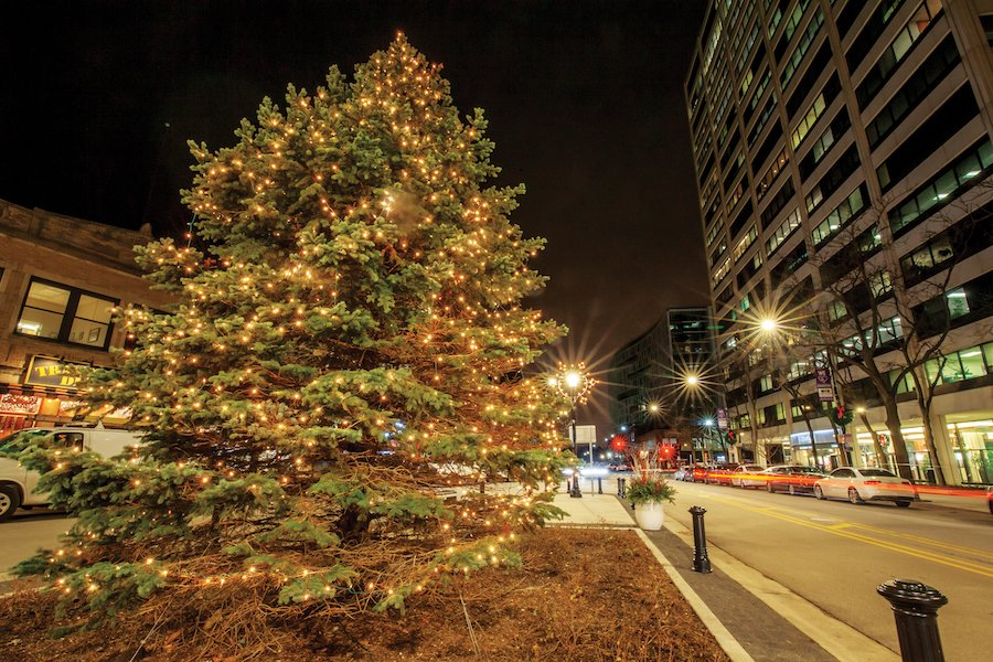 The Christmas tree in Downtown Evanston in 2019. Evanston residents and businesses are reimagining holiday celebrations this year as beloved traditions move virtual.
