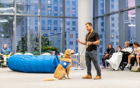 Canine Therapy Corps aims to use dogs to help people change their behavior in a healthy way. It hosts numerous programs at locations across the city, like at the Shirley Ryan AbilityLab.