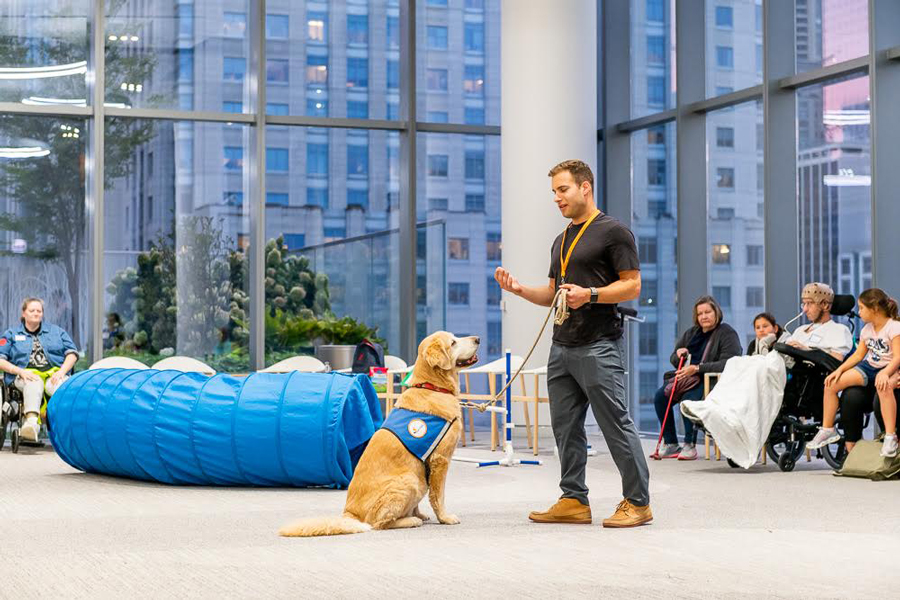 Canine+Therapy+Corps+aims+to+use+dogs+to+help+people+change+their+behavior+in+a+healthy+way.+It+hosts+numerous+programs+at+locations+across+the+city%2C+like+at+the+Shirley+Ryan+AbilityLab.