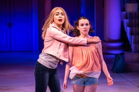 """""""Legally Blonde"""" explores gender roles on college campuses"""
