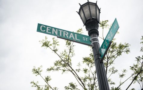 Central Street establishes Special Service Areas to support community