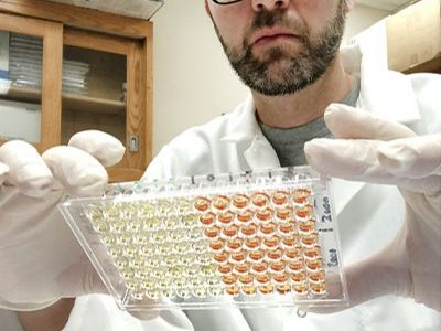 NU scientists develop new antibody test for COVID-19