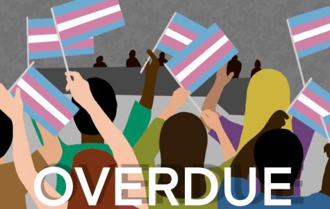 In Focus: A Park School teacher faced harassment after coming out as transgender. The school district struggled to act.