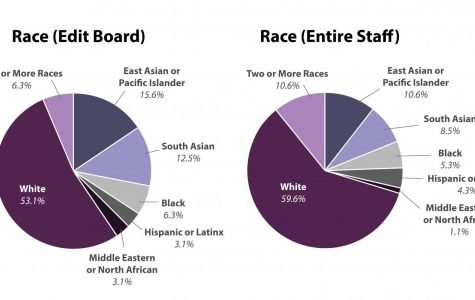 The Daily Northwestern's 2020 Diversity Report