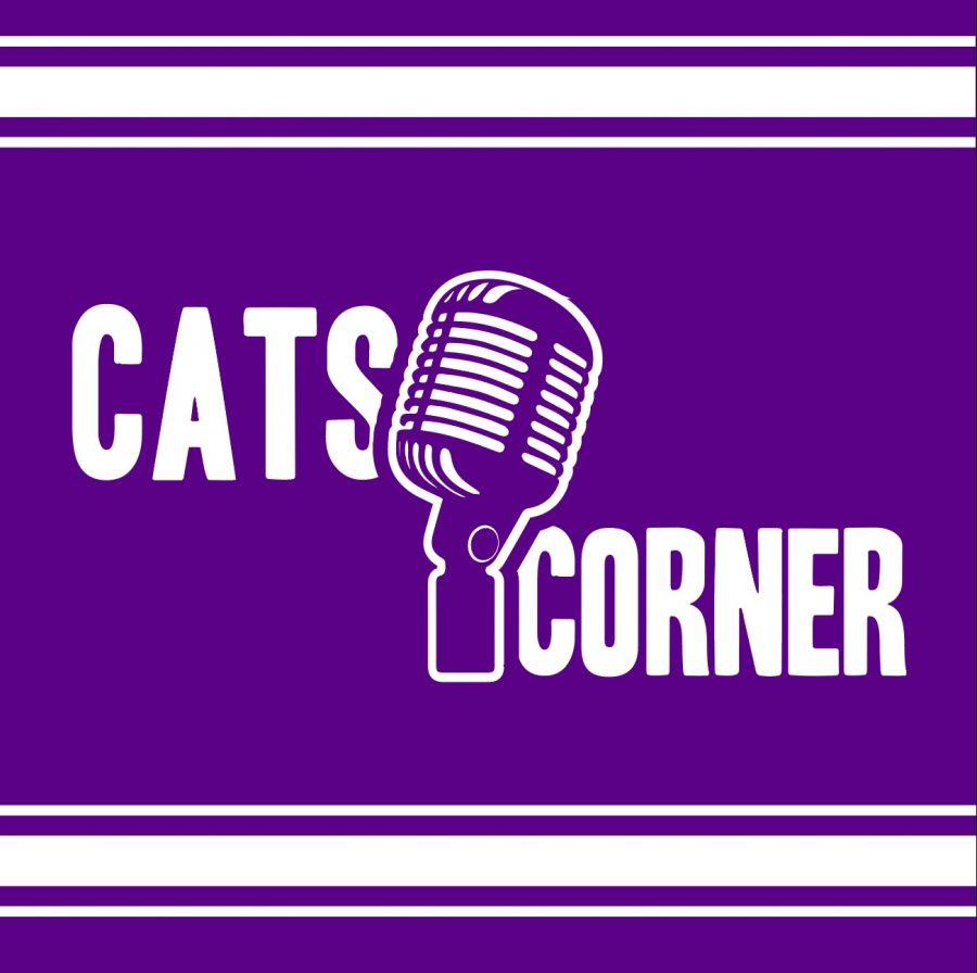 Reintroducing Cats Corner