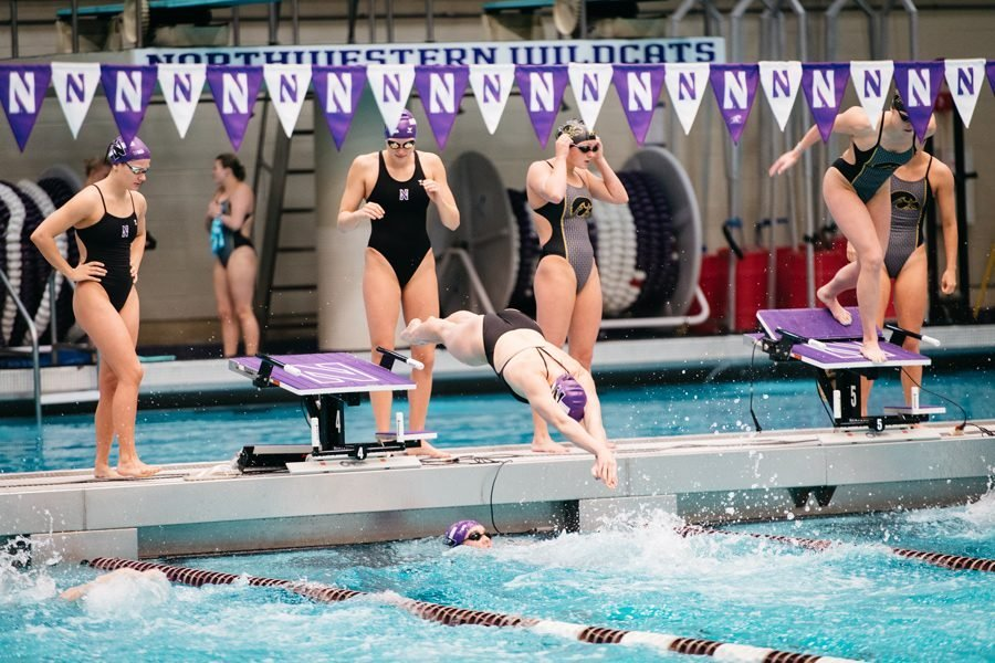 A Northwestern swimmer dives into the water.