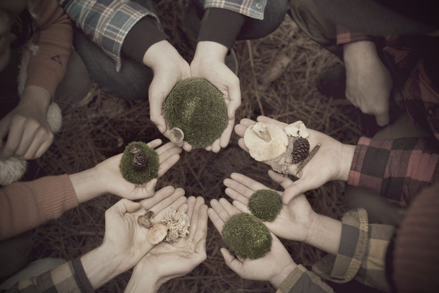 Hands in a circle, holding plants, rocks, branches and pine cones.