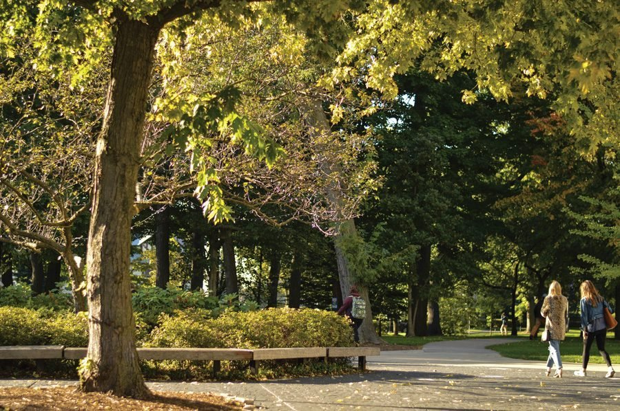 A sunlit clearing surrounded by trees full of green leaves. Two students walking on the right side of the image. One student with a green backpack walking in the center of the image.