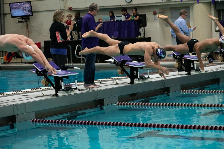 A Northwestern swimmer jumps into a pool.
