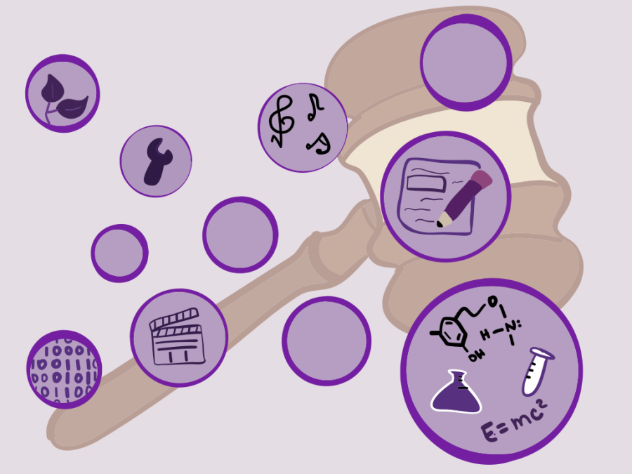 A gavel surrounded by purple bubbles filled with various academic symbols.